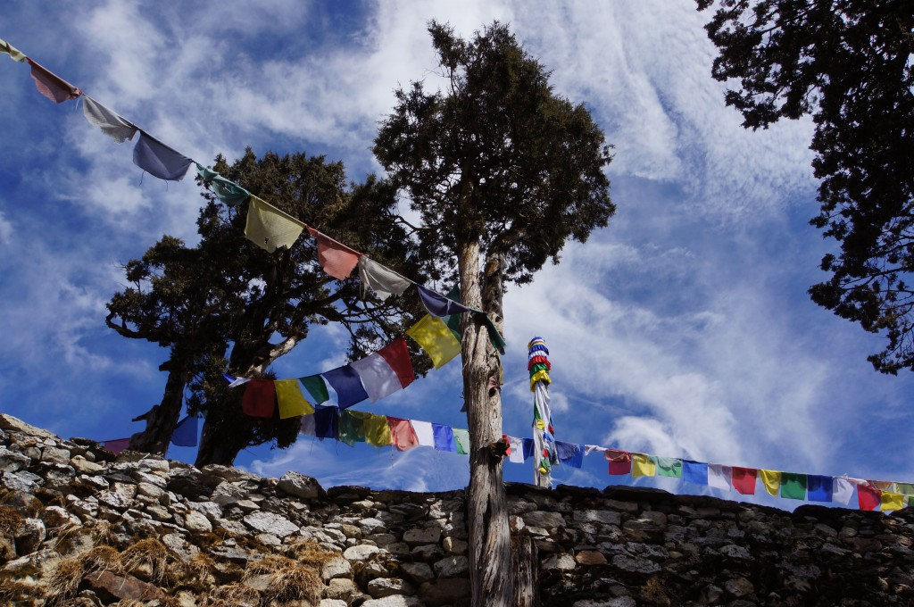 Prayer flags near Lama Geshi's home.