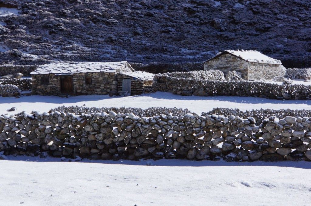 Stone fences and pristine yak paddies... everything looks clean and new under the snow.