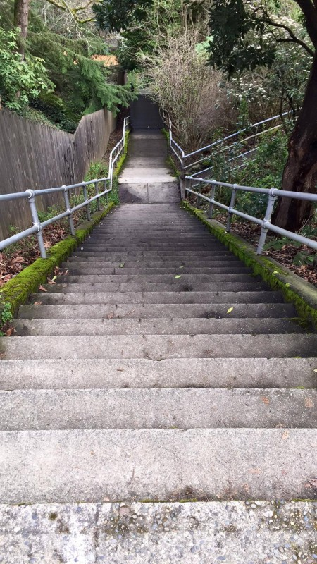 My standard training route: 100 steps down the street from my house. Typical routine: 24 reps up & down.