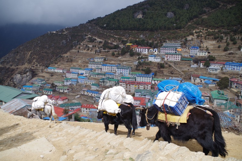 Namche photographed from the new dental clinic.  (Photo: Kim Hess)